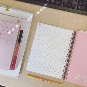 Planejamento 2019 | Miss Paper | Karina Matos